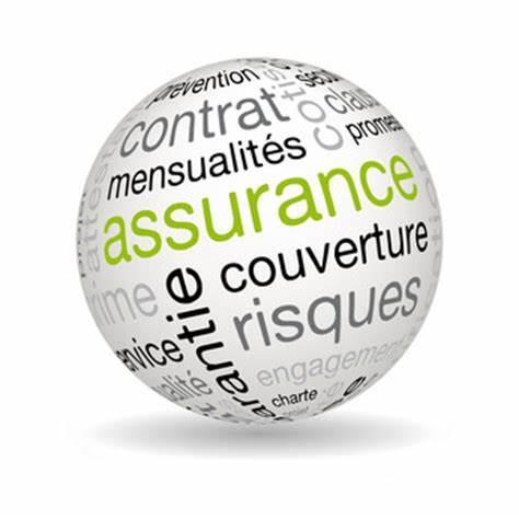Assurance Responsabilité Professionnelle (RC Pro) : Obligatoire pour qui ?